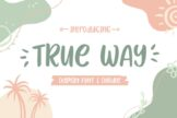 Last preview image of True Way