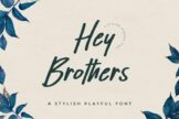 Last preview image of Hey Brothers