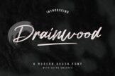 Last preview image of Drainwood