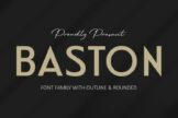 Last preview image of BASTON